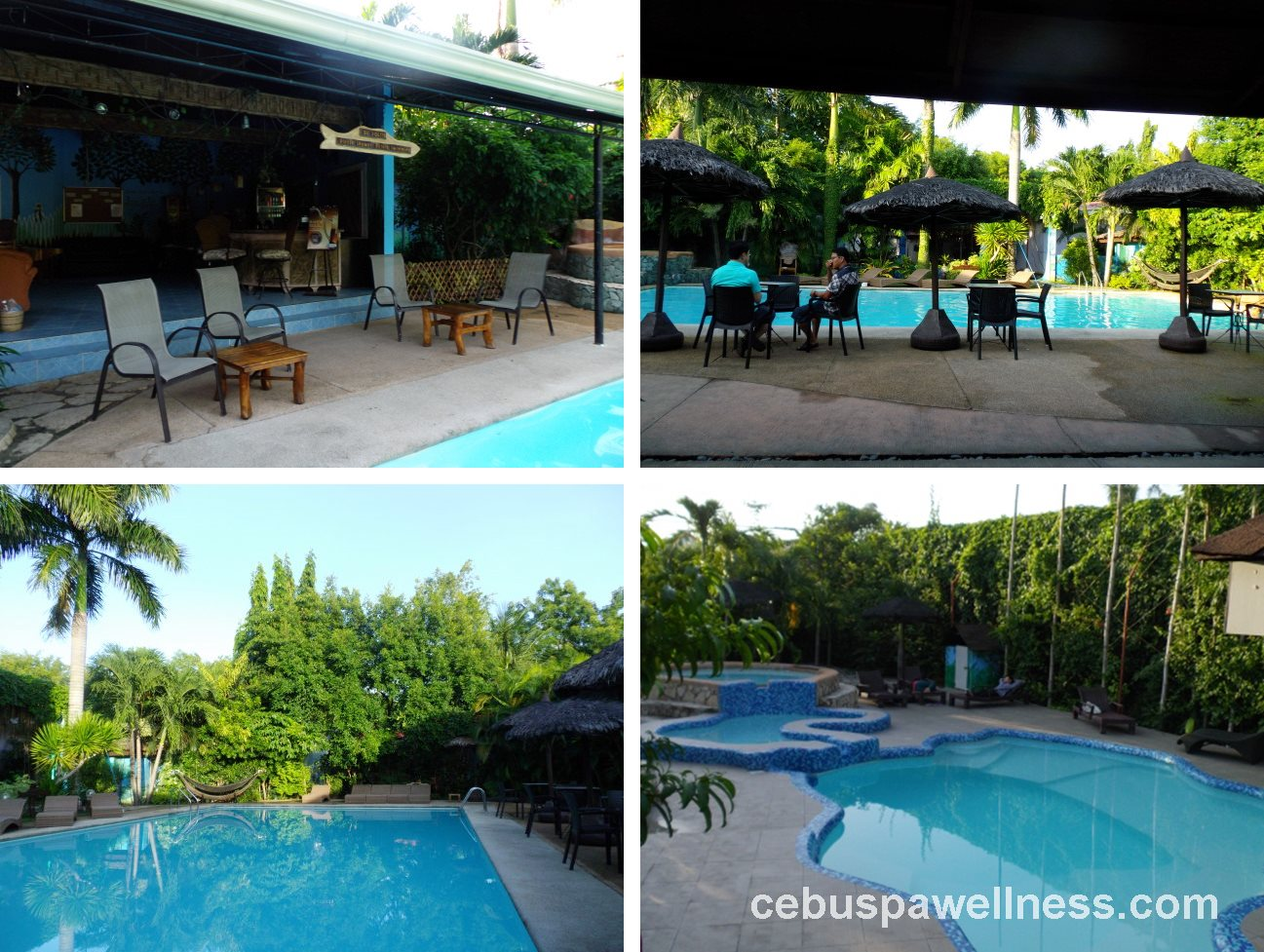 Alta Cebu Swimming Pools Cebu Spa Wellness Guide